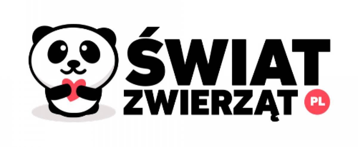 Nowy portal oi zwierzetach grupy IBERION Swiatzwierzat.pl